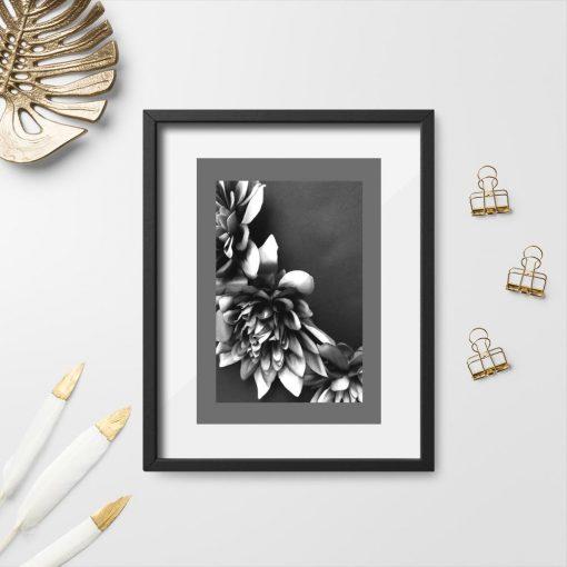 Plakat - Kwiaty czarno-białe do biura