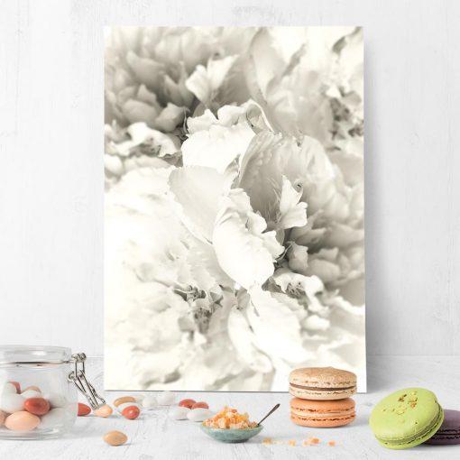 plakat z romantycznymi kwiatami piwonii