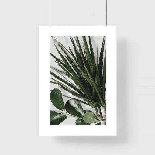 Plakat passe-partout z roślinami
