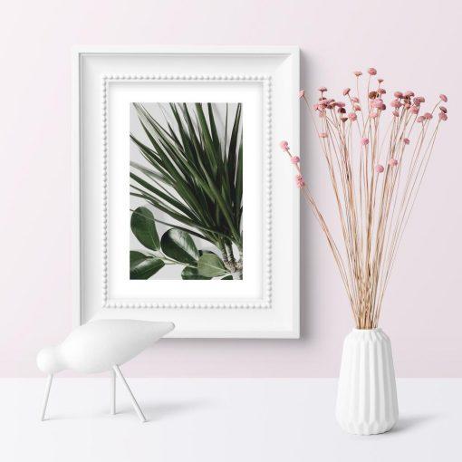 Plakat z doniczkowymi roślinami