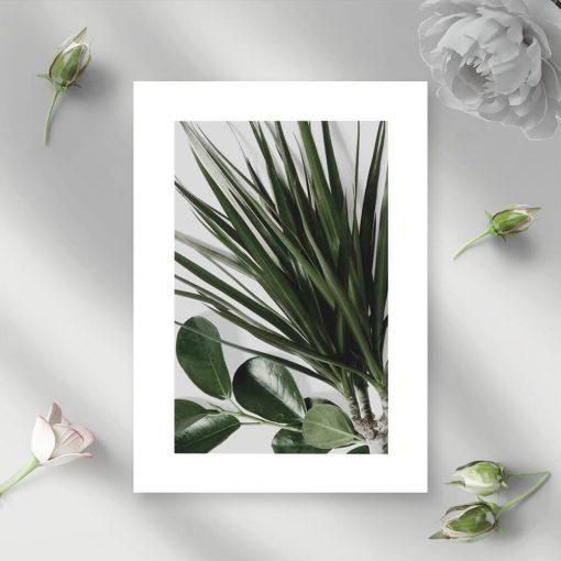 Zielona dekoracja roślinna na plakacie
