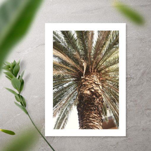 Plakat do biura podróży - Motyw egzotycznej palmy