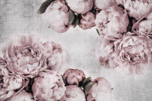Fototapeta z różowymi peoniami