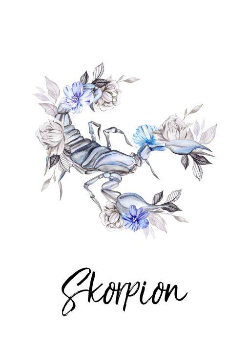 Plakat - Skorpion