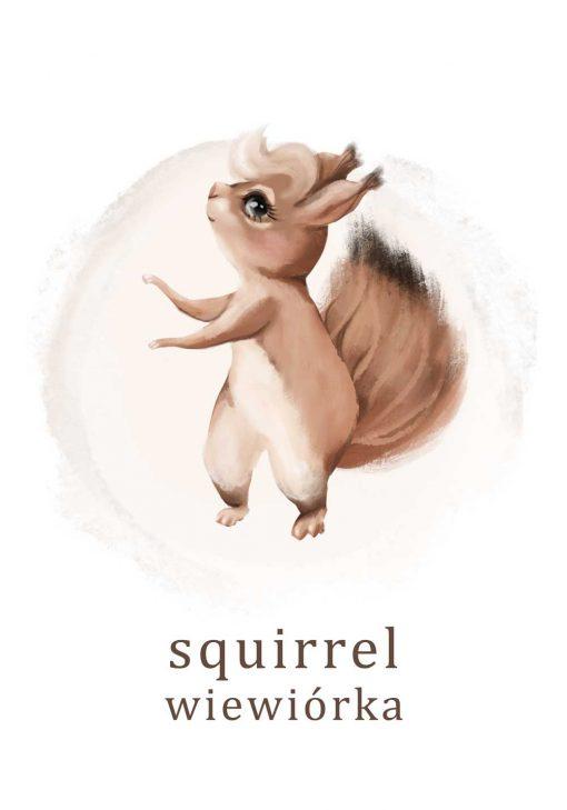 Plakat - Wiewiórka