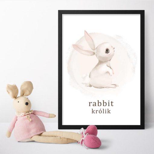 Plakat dla dzieci - Rabbit