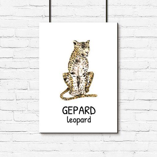dziki kot w cętki - plakat dla dzieci