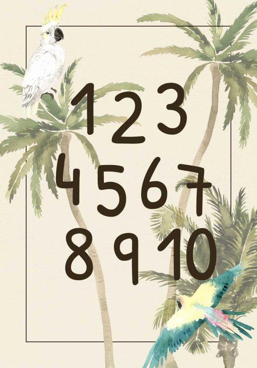 papuga i palmy na edukacyjnym plakacie do szkoły
