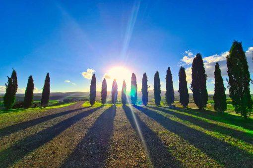 Obraz krajobraz Toskanii z okolic Poggio Covili