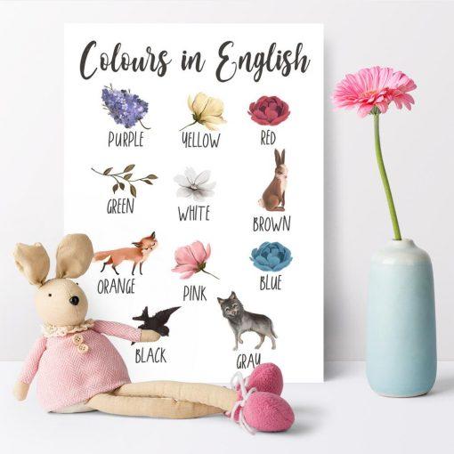 Kolorowe kwiaty - Plakat edukacyjny dla dzieci