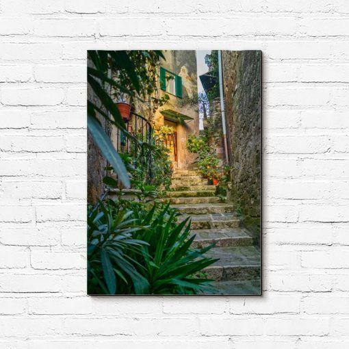 Obraz z wąskimi schodami i roślinami