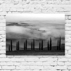 Obraz z czarno-białym krajobrazem z drzewkami
