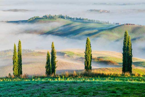 Obraz z zielonym górskim widokiem do pokoju