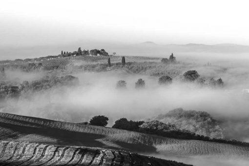 Czarno-biały obraz - Pola we mgle na prezent