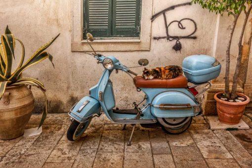Kolorowy obraz z uliczką na Korfu
