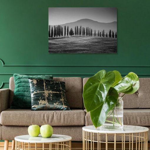 Czarno-biały obraz z górskim krajobrazem do sypialni