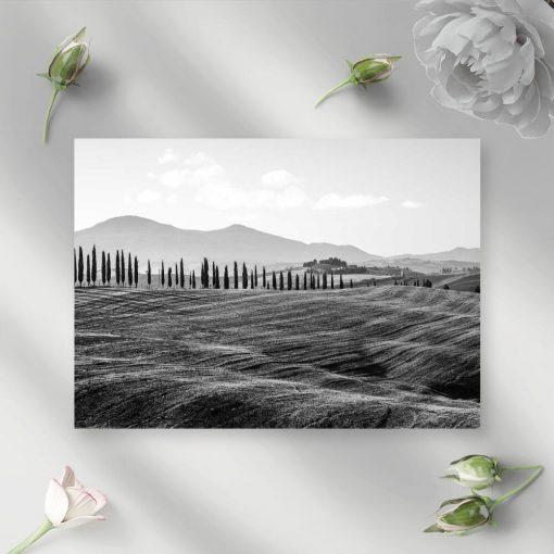 Czarno-biały obraz z motywem pola i drzew do pokoju