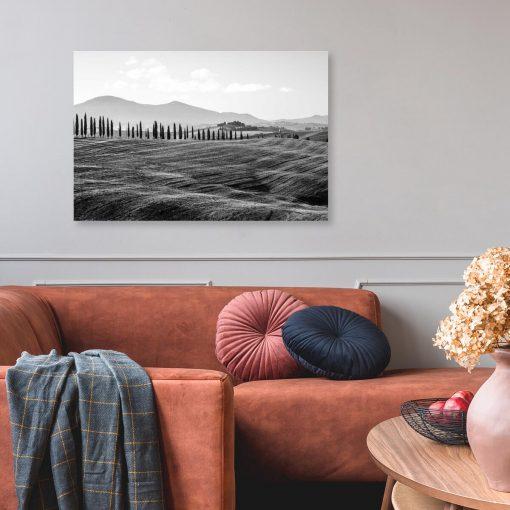 Czarno-biały obraz z motywem pola i drzew do dekoracji gabinetu