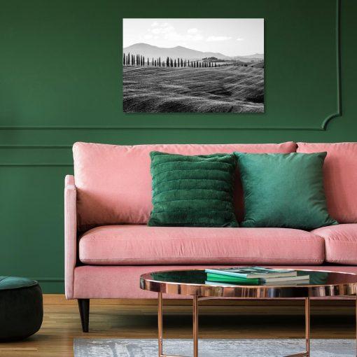 Czarno-biały obraz z motywem pola i drzew do salonu