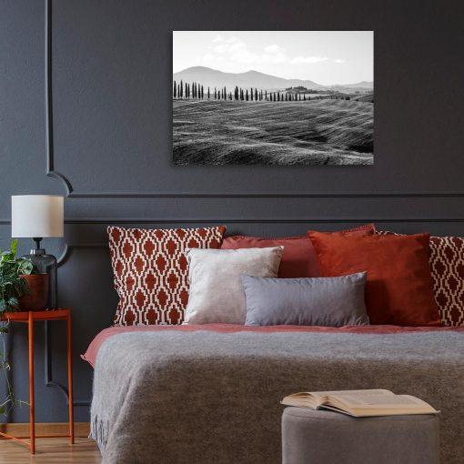 Czarno-biały obraz z motywem pola i drzew do sypialni