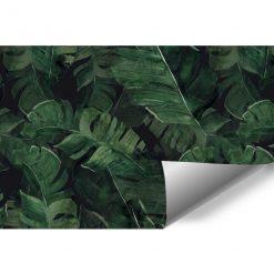 Tapeta tropikalne liście w zielonym kolorze
