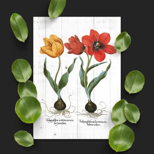 Plakat z tulipanami do sypialni