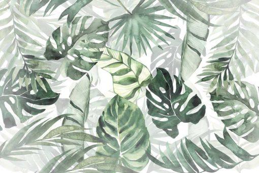 Fototapeta tropikalne liście