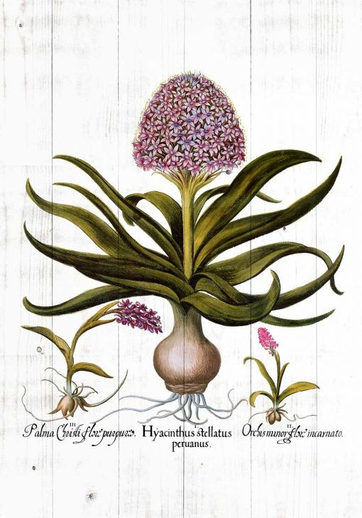 Plakat z kwiatami na deskach do kuchni