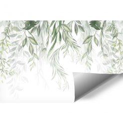 Fototapeta z roślinami w zielonym kolorze
