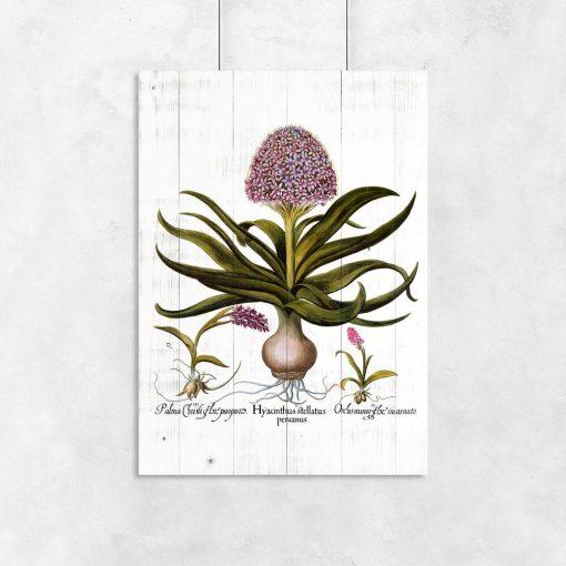 Plakat z kwiatami na deskach do przedpokoju