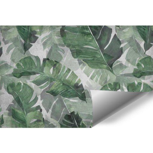 Zielona fototapeta z motywem botanicznym
