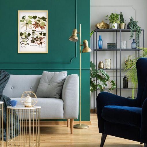 Botaniczny plakat boho z porzeczkami do salonu
