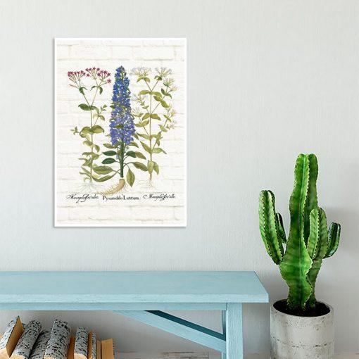 Edukacyjny plakat botaniczny z motywem polnych kwiatów do gabinetu