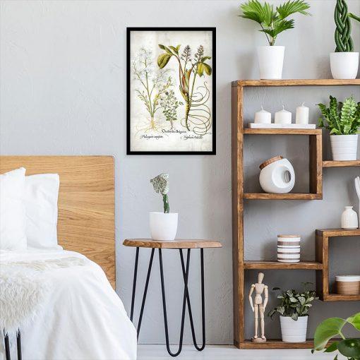 Plakat botaniczny - Plumeria do sypialni