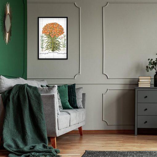 Plakat botaniczny z lilią pomarańczową do salonu