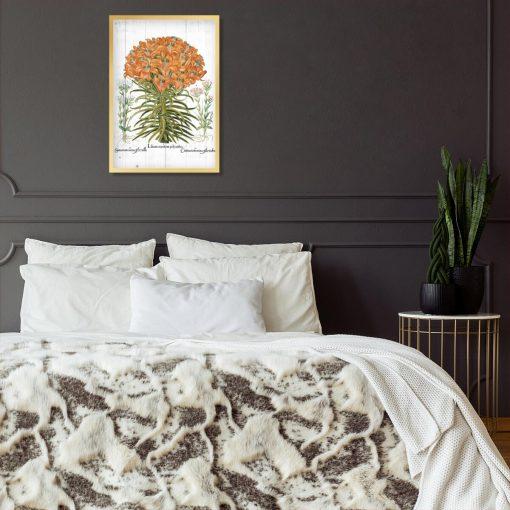 Plakat botaniczny z lilią pomarańczową do sypialni