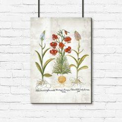 Plakat botaniczny z motywem kwiatów dekoracyjnych