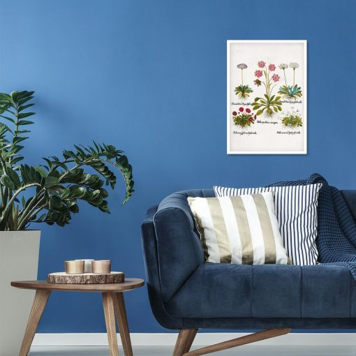 Plakat dla florysty - Biała stokrotka trwała do sypialni