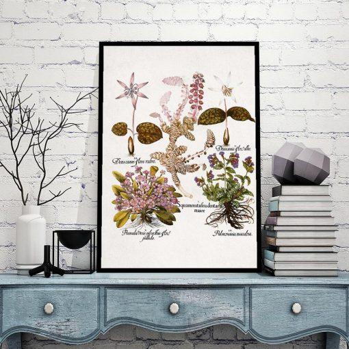 Plakat dla florysty - Prymulki do gabinetu