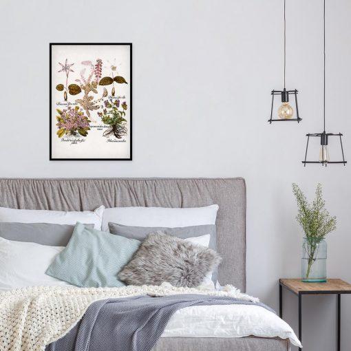Plakat dla florysty - Prymulki do sypialni