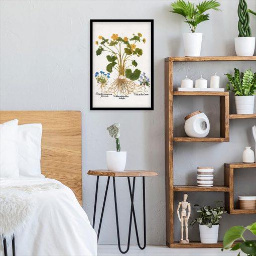 Plakat do sypialni z goryczką wiosenną do sypialni