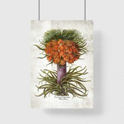 Plakat florystyczny z cesarską koroną do biura