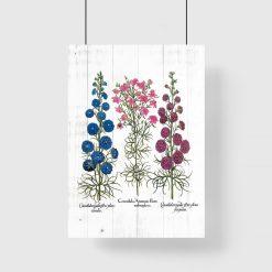 Plakat gatunki roślin zielnych na tle desek