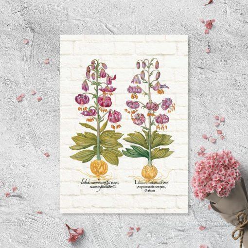 Plakat z fioletowymi liliami na tle cegieł