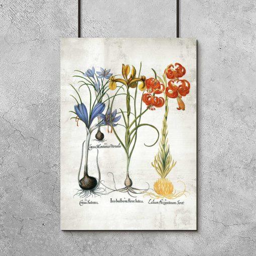 Plakat z kolorowymi kwiatami jako pomoc naukowa