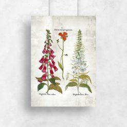 Plakat z kwiatami dekoracyjnymi w kolorze czerwieni i bieli