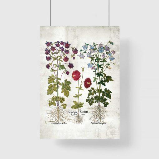 Plakat z kwiatami do szkolnej klasy