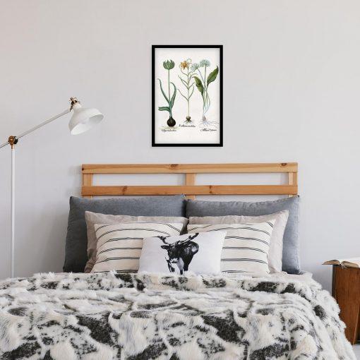 Plakat z kwiatem czosnku niedźwiedziego do sypialni