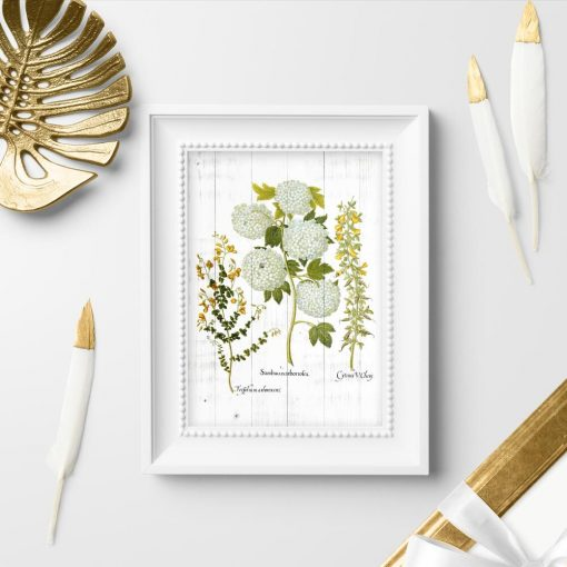 Plakat z kwiatostanem roślin uprawnych
