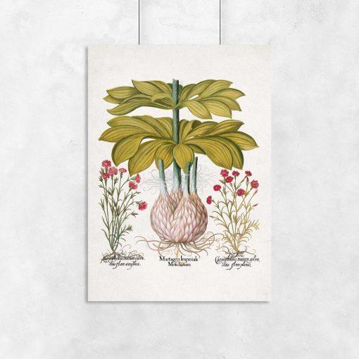 Plakat z lilią i rośliną z czerwonymi kwiatkami